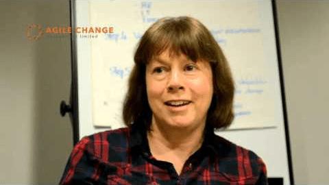 Change management delegate